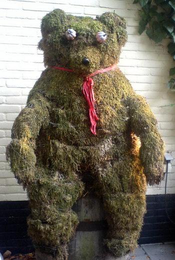 Mossy bear